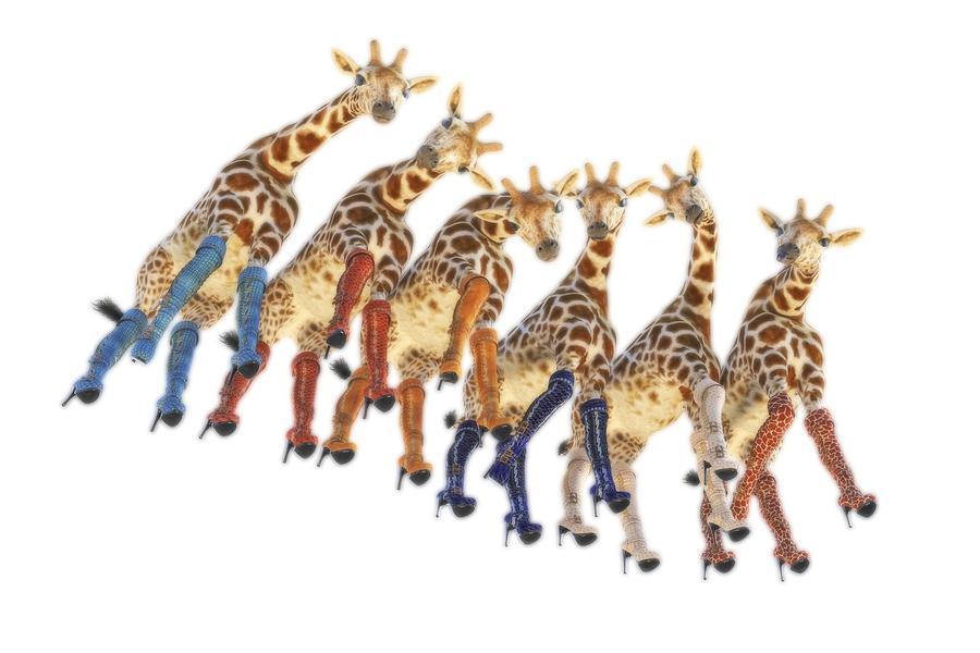 Surreal Digital Art - Curious Giraffes PNG by Betsy Knapp