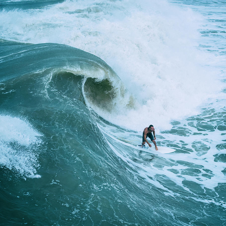Curl - Big Wave Surfer sq by Laura Fasulo