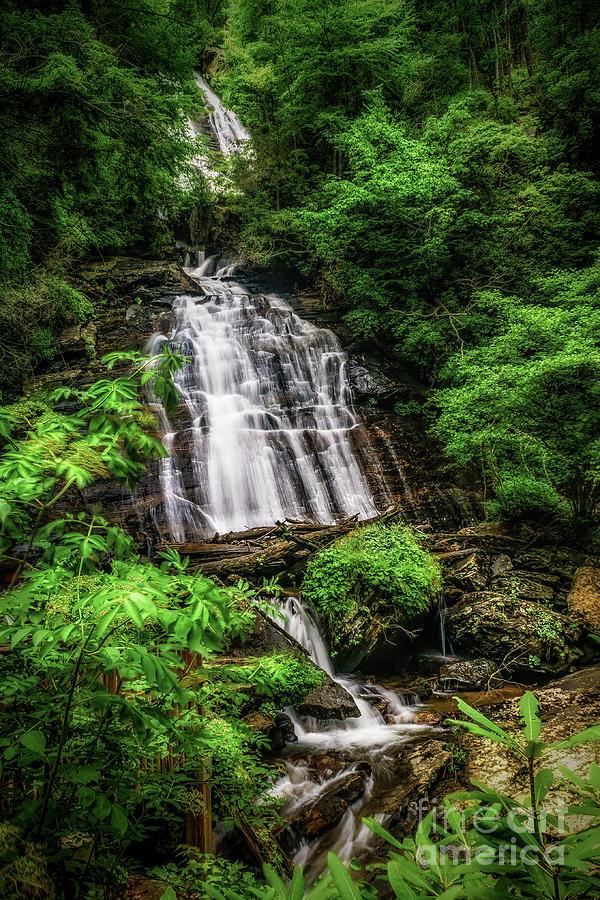 Curtis Creek Falls by Nick Zelinsky