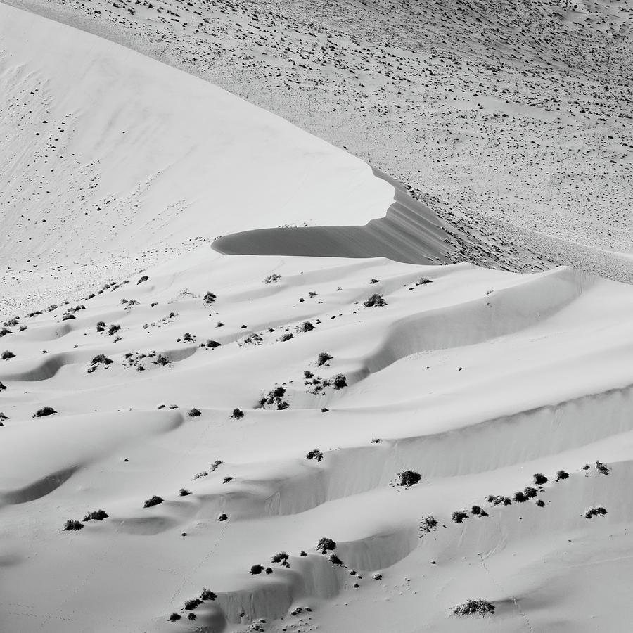 Curve by Dalibor Hanzal