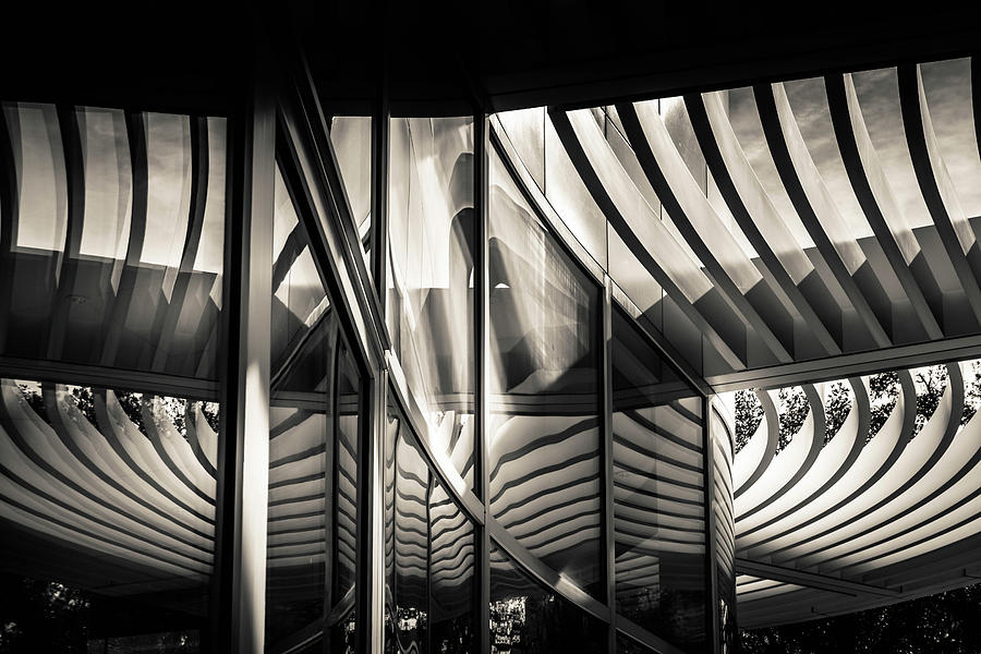 Curved Space by Francine Collier