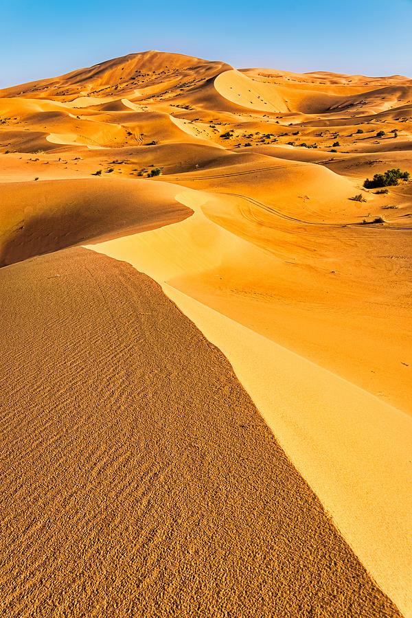 Curving Sand Dune Ridges - Morocco by Stuart Litoff