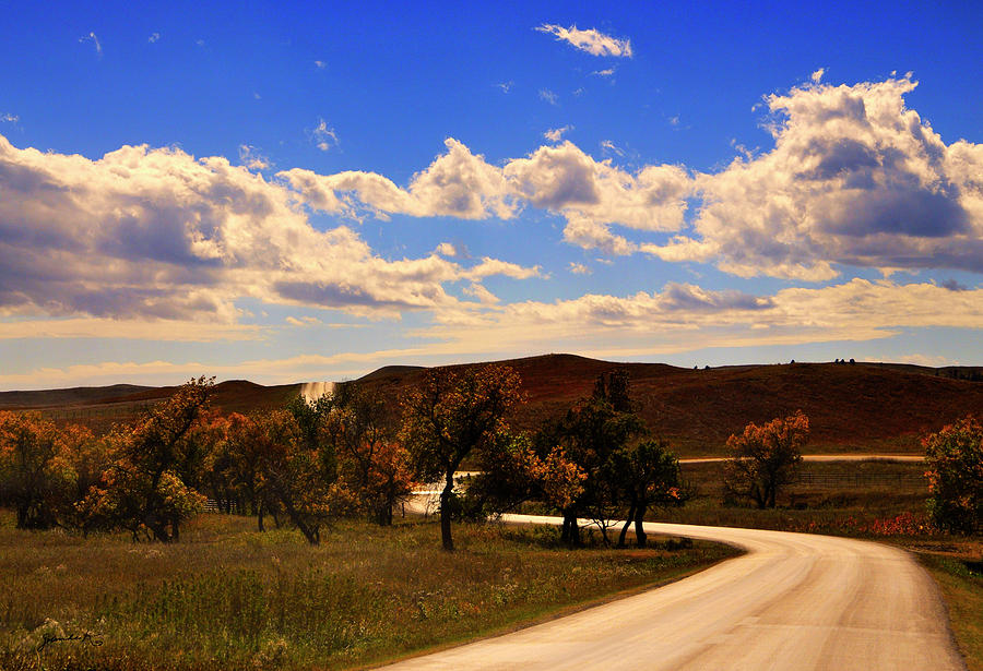 Custer State Park South Dakota United States of America by Gerlinde Keating - Galleria GK Keating Associates Inc