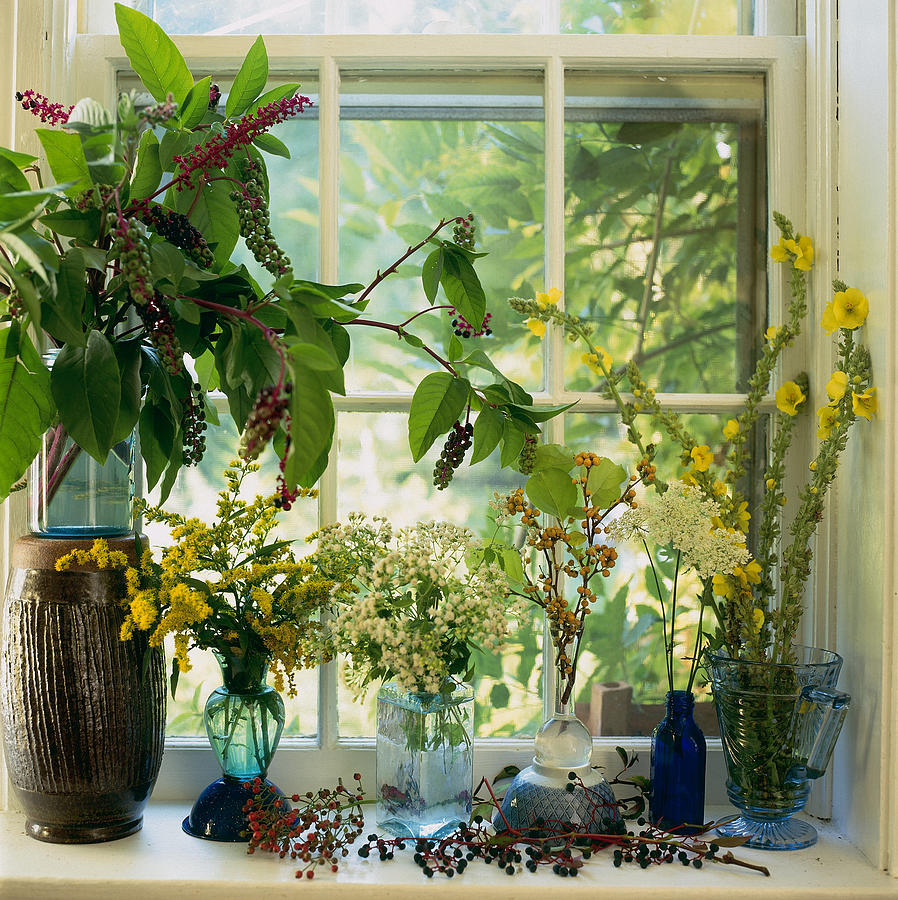 Vase Photograph - Cut Wild Flowers In Vases On by Richard Felber