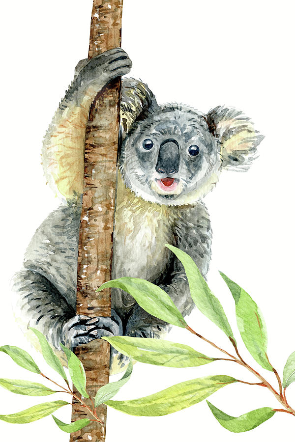 Cute Koala, watercolor nursery decor by Cool Vintage Art