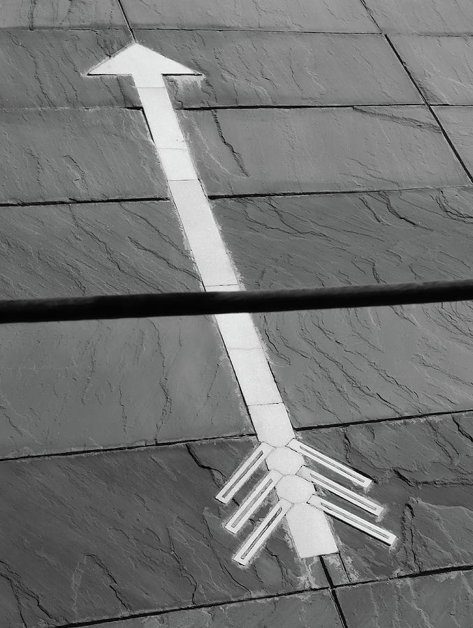 Cutting the Arrow by Prakash Ghai