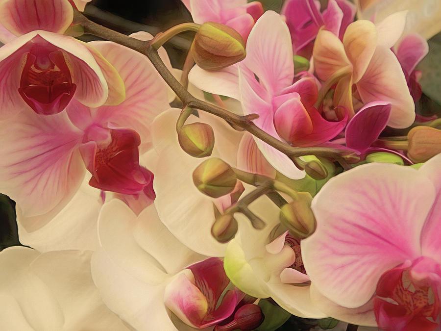 Cycle of Beauty 10 by Lynda Lehmann