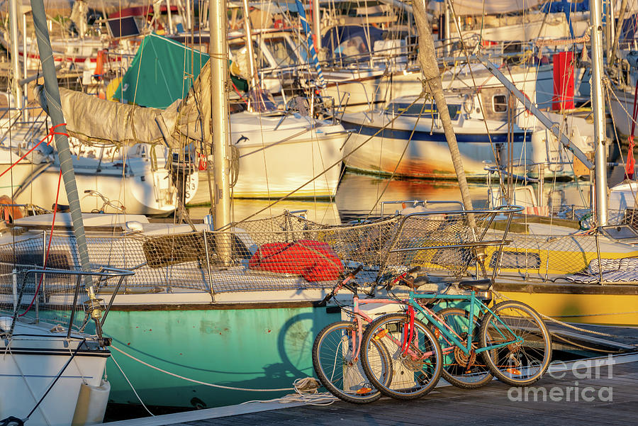 Marina Photograph - Cycling And Sailing by Delphimages Photo Creations