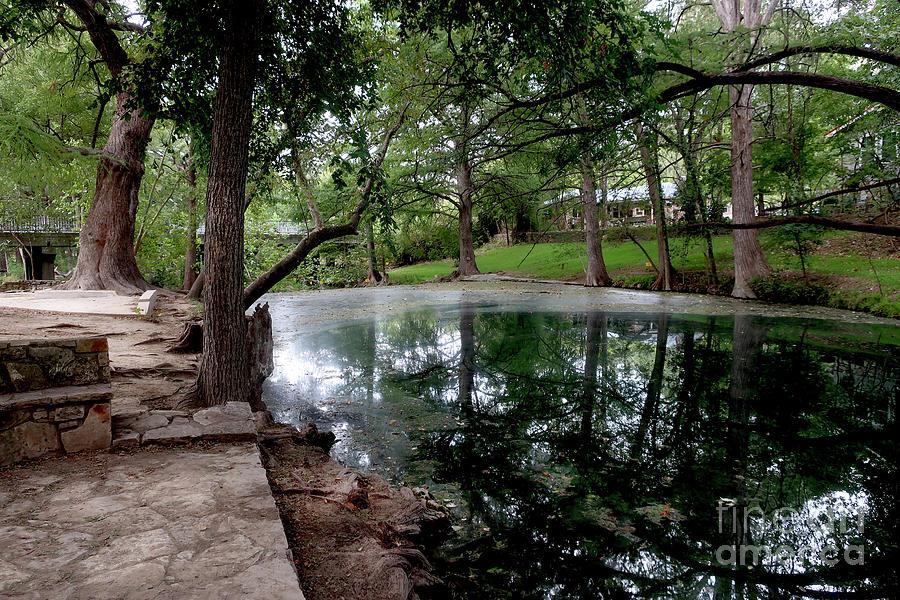 Cypress Creek Mid Afternoon Mid October 3 of 3 by Felipe Adan Lerma