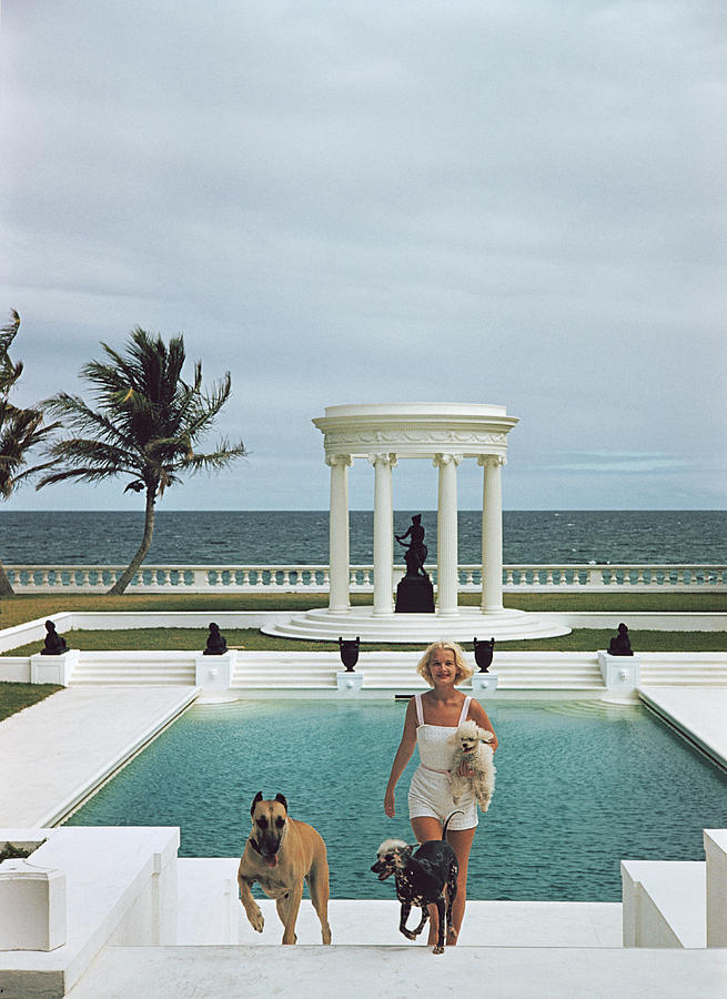 Czs Dogs Photograph by Slim Aarons