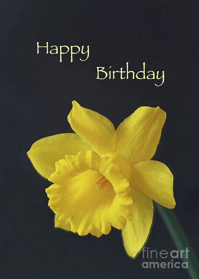 Daffodil Delight - Happy Birthday by Ann Horn