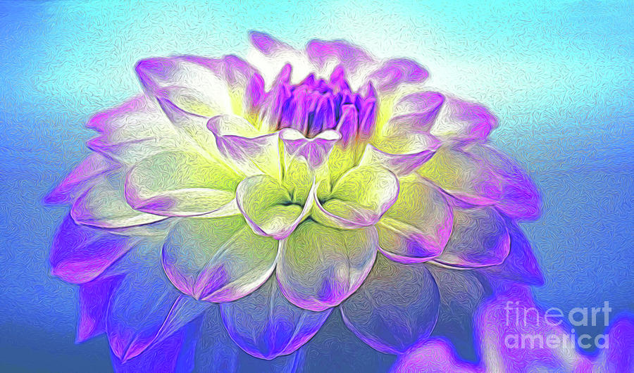 Special Effects Photograph - Dahlia Drama by Patti Whitten