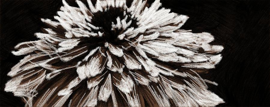 Dahlia En Noir by Alice Gipson