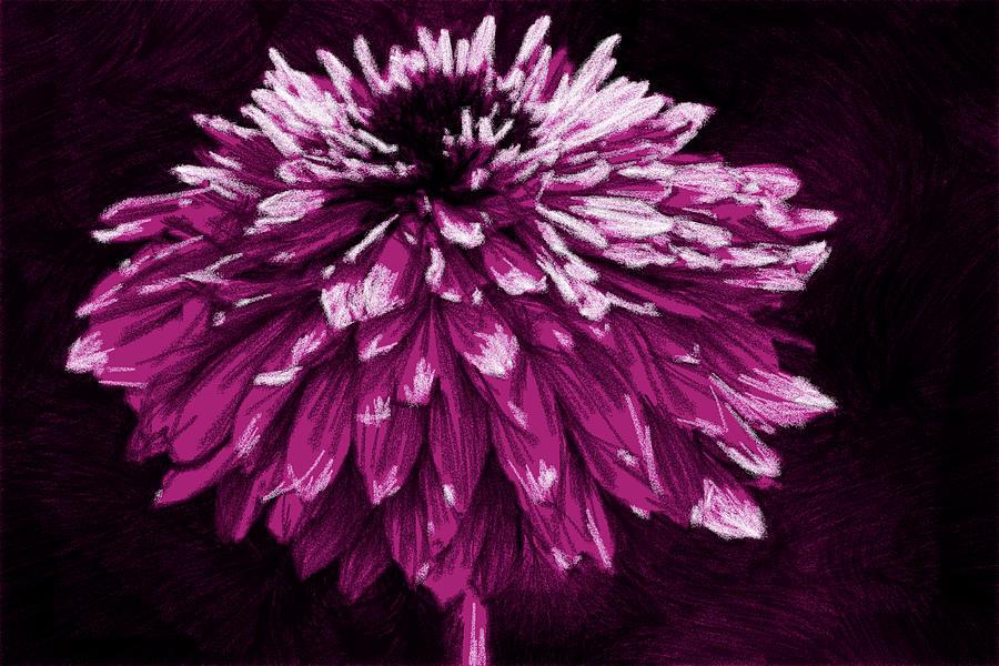 Dahlia En Rose by Alice Gipson