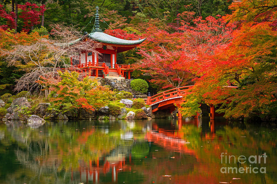 Beauty Photograph - Daigo-ji Temple With Colorful Maple by Patryk Kosmider