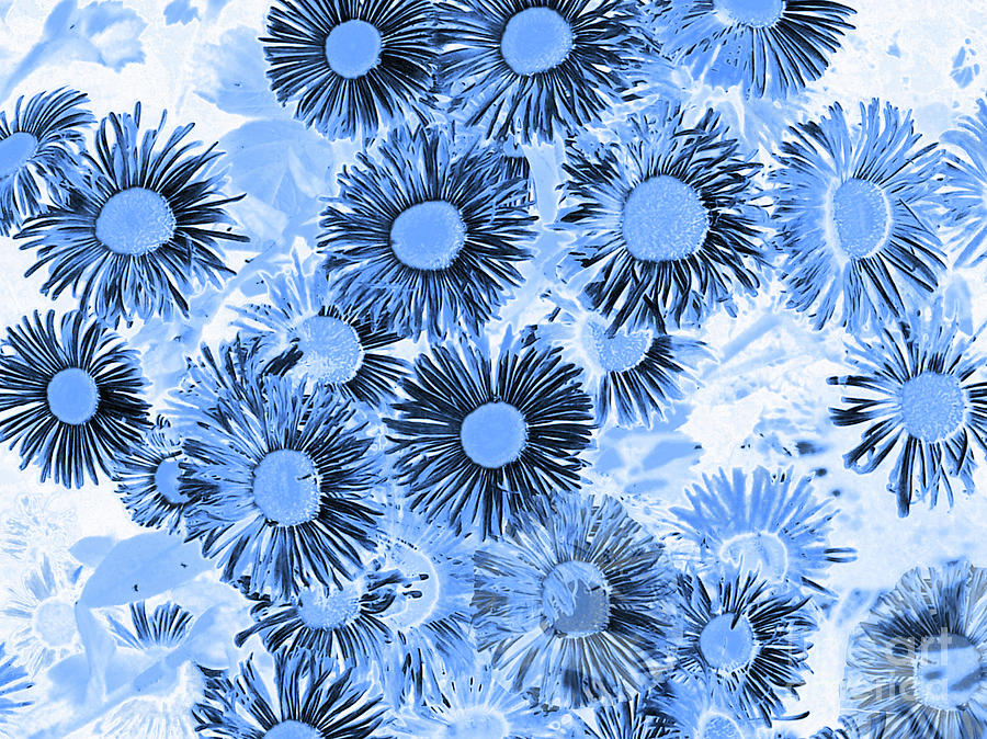Daisy Flowers Blue by Cveti Dinkova