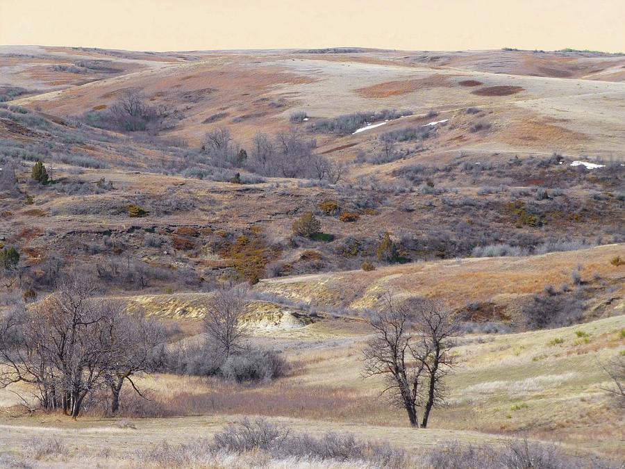 Dakota Prairie Slope Reverie by Cris Fulton