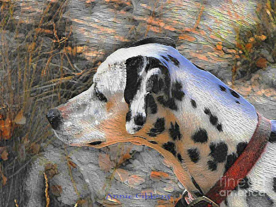 Dalmatian Dog Digital Art - Dalmatian Dog by Annie Gibbons