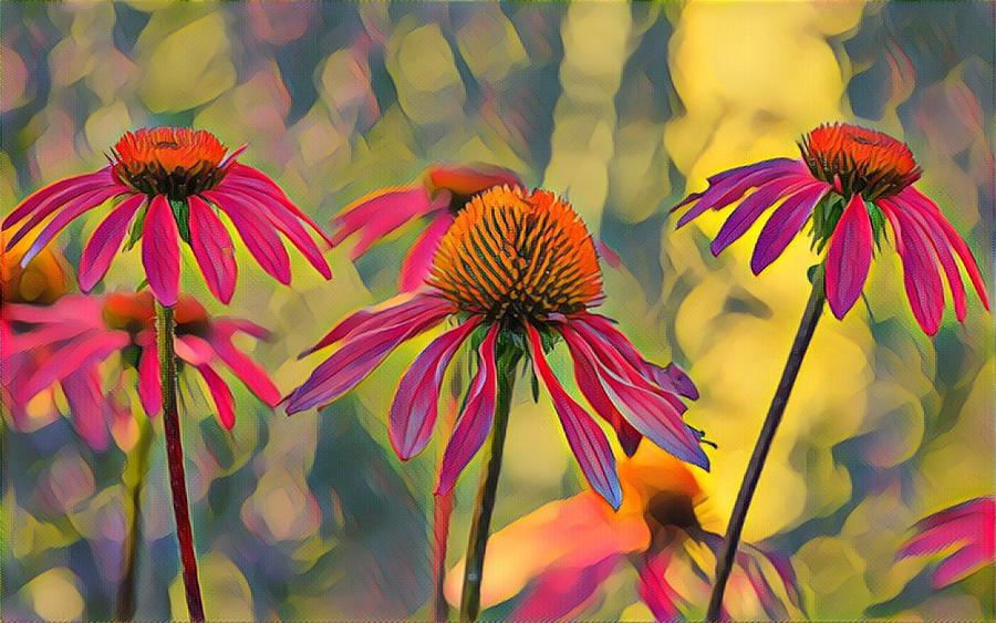 Dancing in the Sun by Susan Rydberg