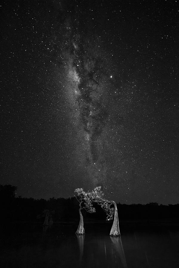 Nightsky Photograph - Dancing With Milky Way by Vincent Lim