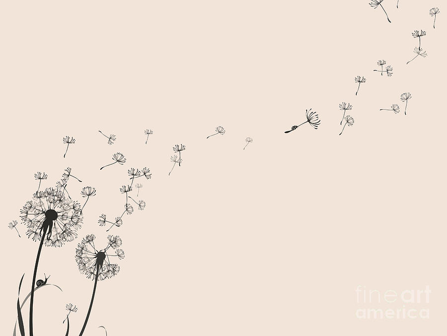 Snail Digital Art - Dandelion Silhouette Snail And Ladybug by Eva mask