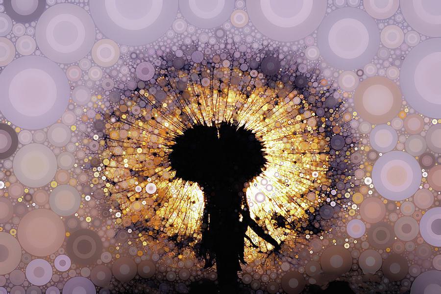 Dandelion Twilight by Susan Maxwell Schmidt