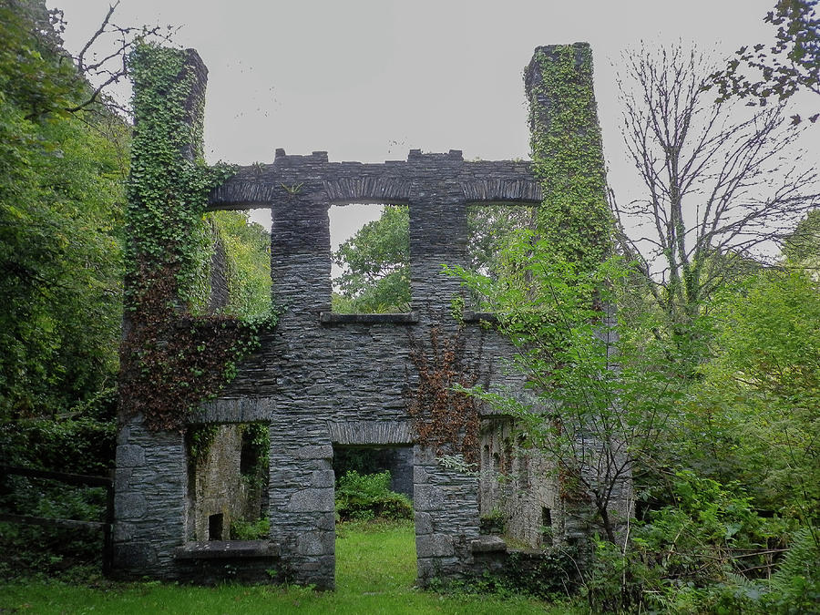 DANESCOMBE PAPER MILL RUINS CORNWALL by Richard Brookes