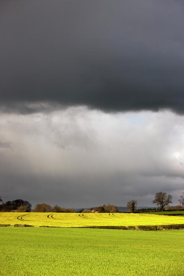 Dark Storm Clouds Over Farmland Photograph by John Short / Design Pics