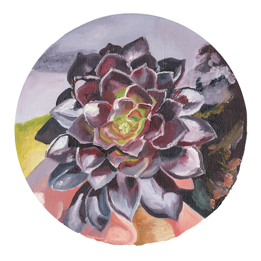 Aeonium in Oil by Brittany Bert Selfe