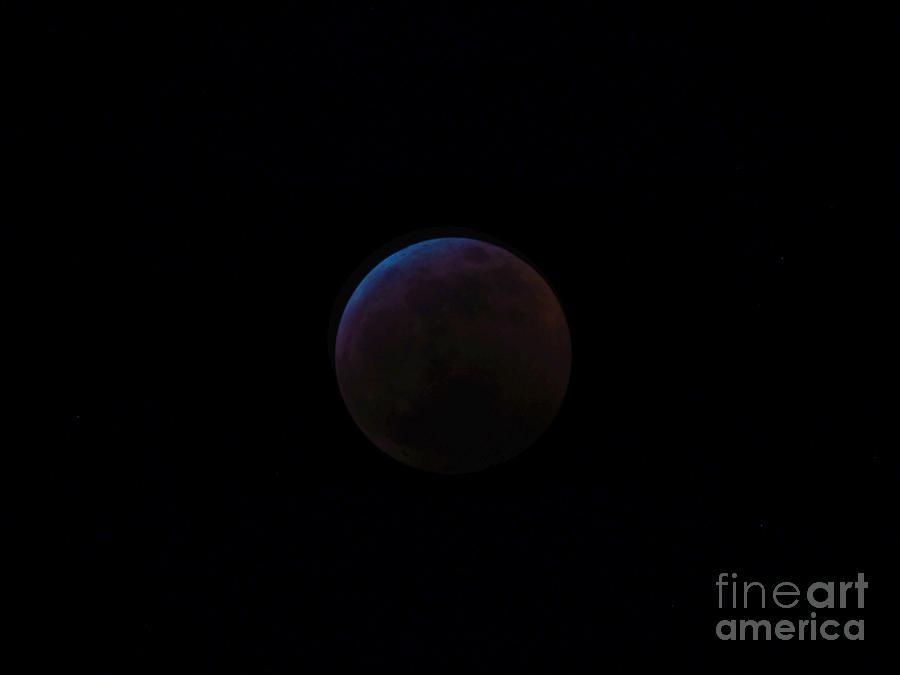 Moon Photograph - Dark Super Blood Wolf Moon Lunar Eclipse 2019 29407 by Robert Knight