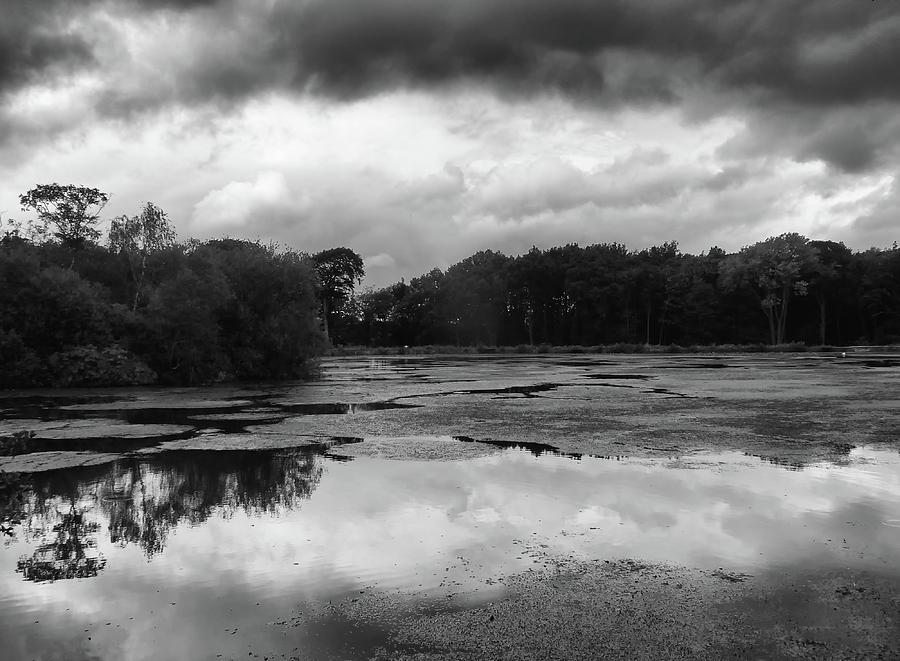 Dark Water Reflection by Philip Openshaw
