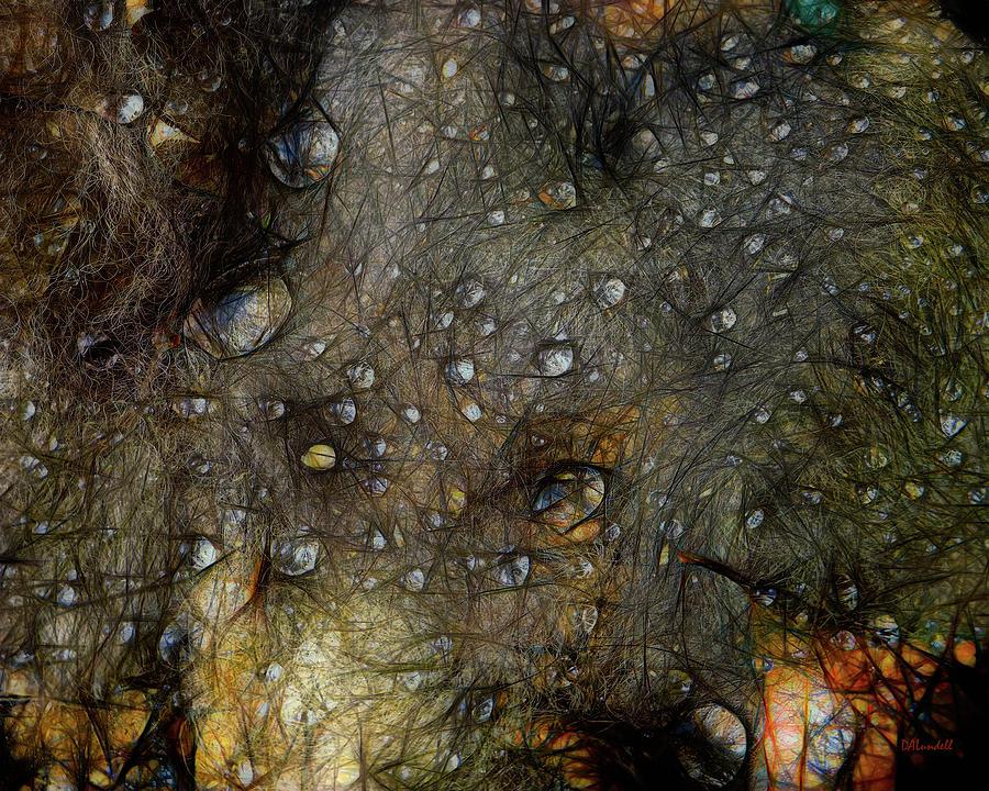 Dark Web by Dennis Lundell
