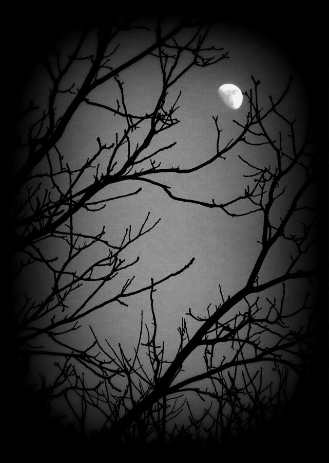 Darkness Falls by Mark Salamon
