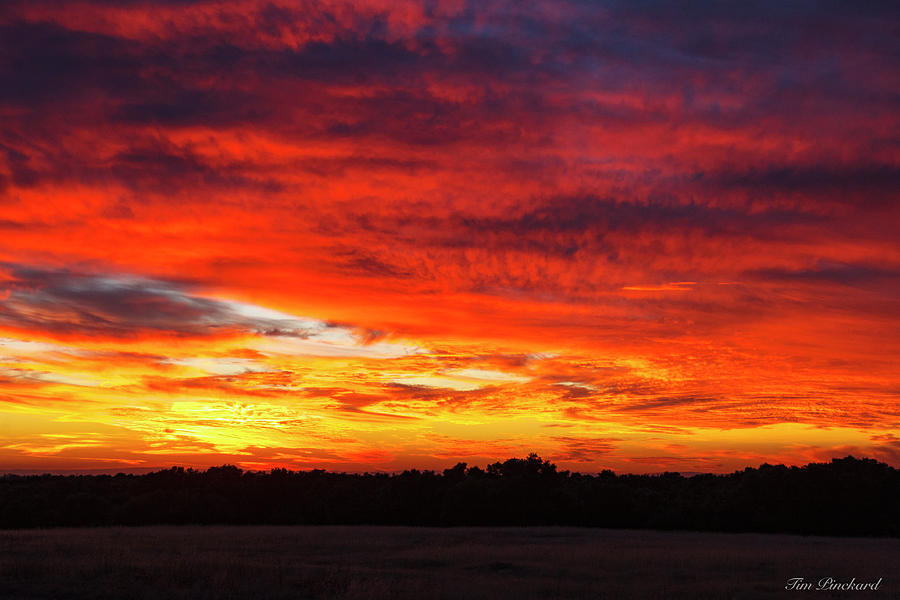 Darmatic sunset with dark treeline. by Timothy Pinckard