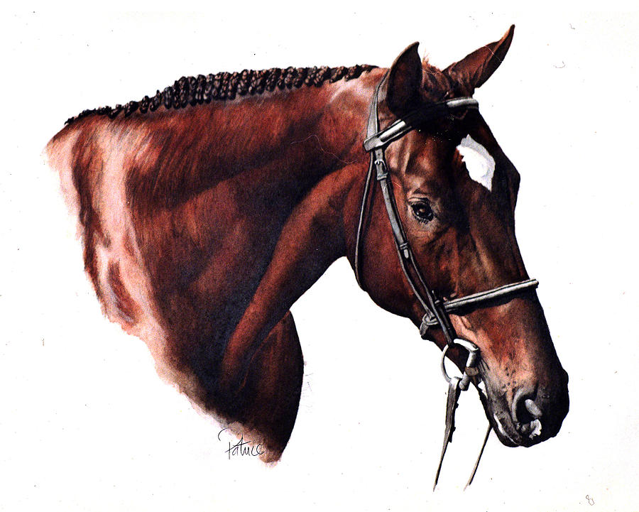 Dave's Horse by Patrice Clarkson