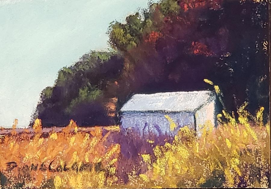 David's Barn  by Diana Colgate
