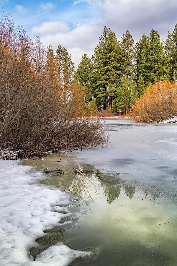 Davis Creek Pond in Winter by Janis Knight