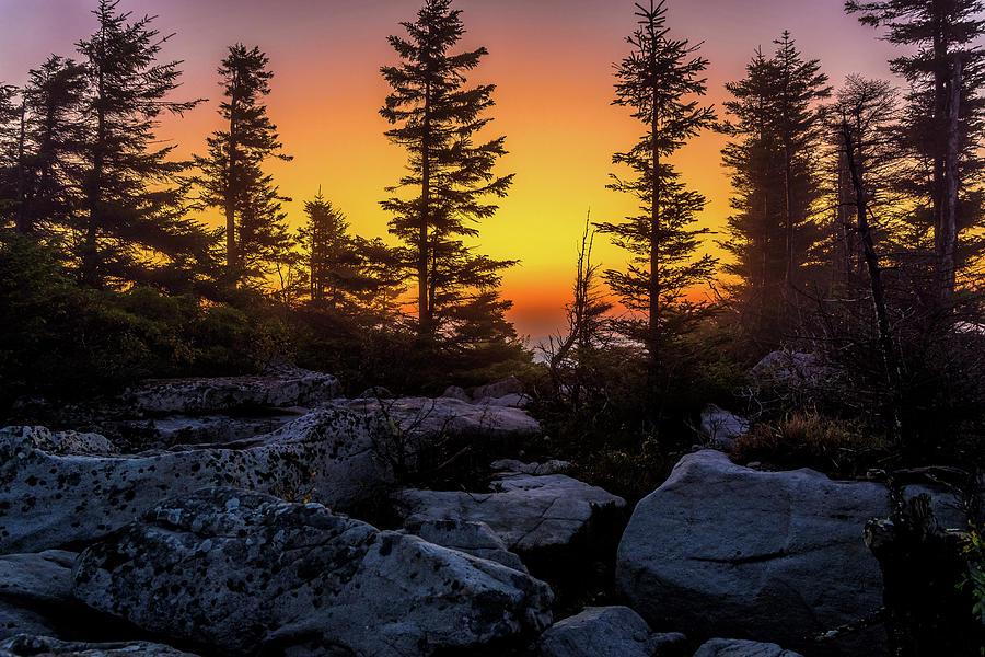 Dawn at Bear Rocks by Lori Coleman