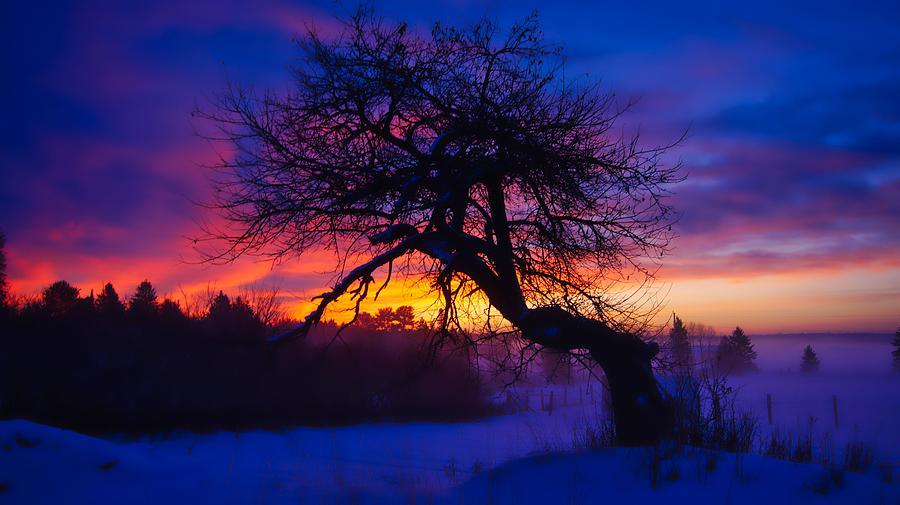 Dawn Dreaming 2 by Bryan Smith