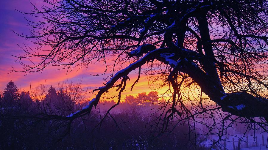 Dawn Dreaming by Bryan Smith