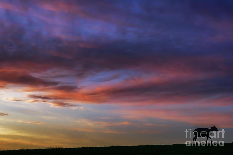 Dawn of a May Morning  by Thomas R Fletcher