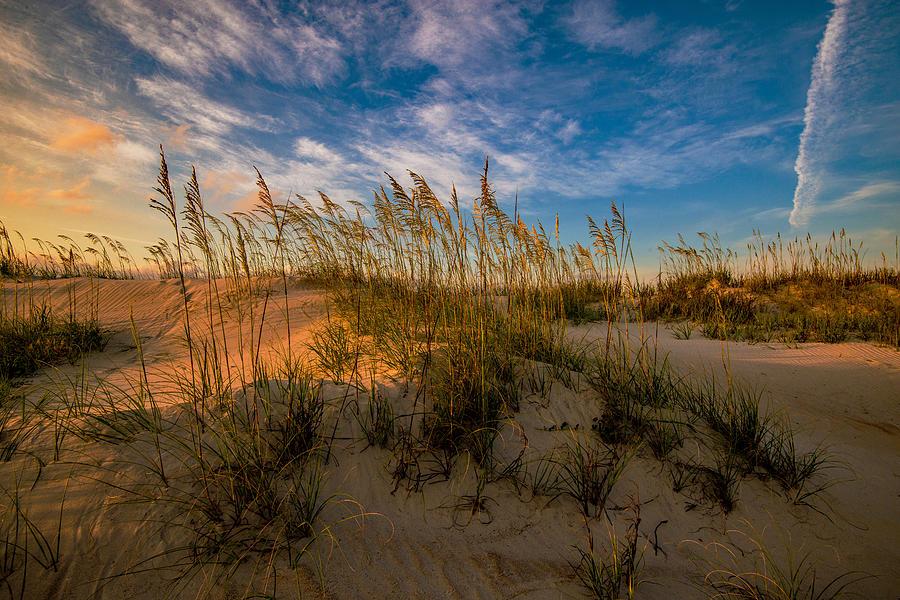Dawn On The Dunes by John Harding