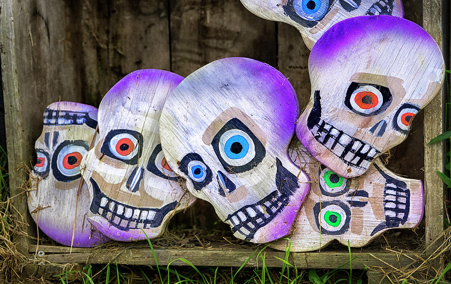 Day of the Dead Decorations by Phil Cardamone