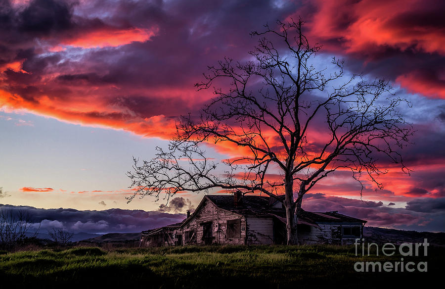 Days Gone Bye by Paul Gillham