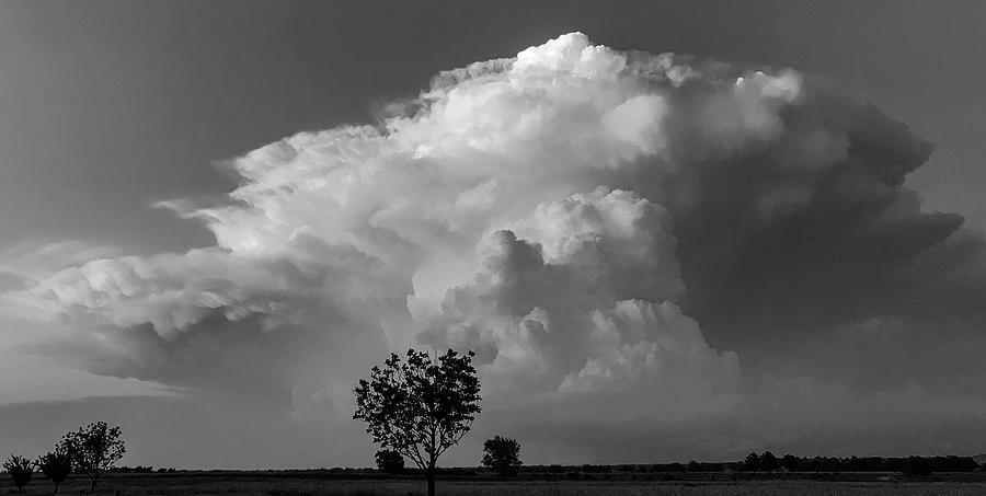 DDP DJD B and W Cloudscape 3218 by David Drew