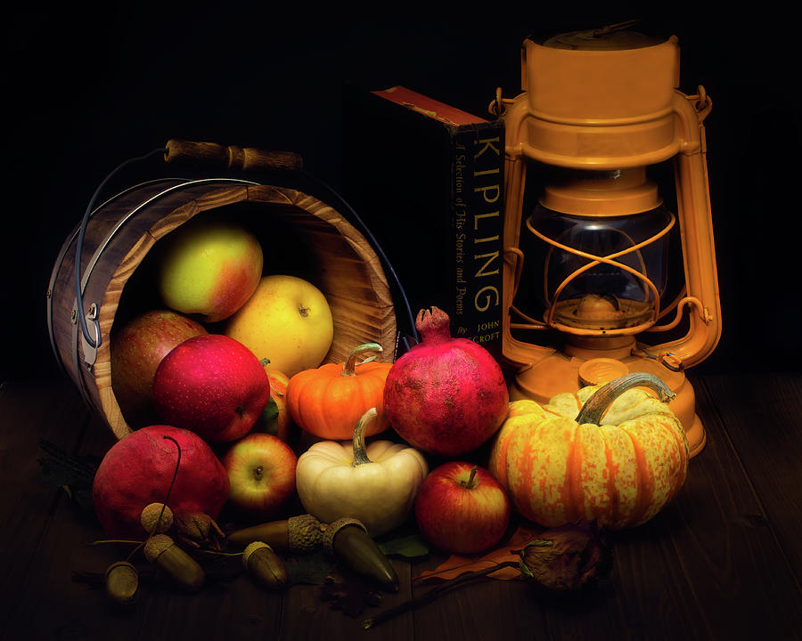 Dead and live Harvest display by Alessandra RC