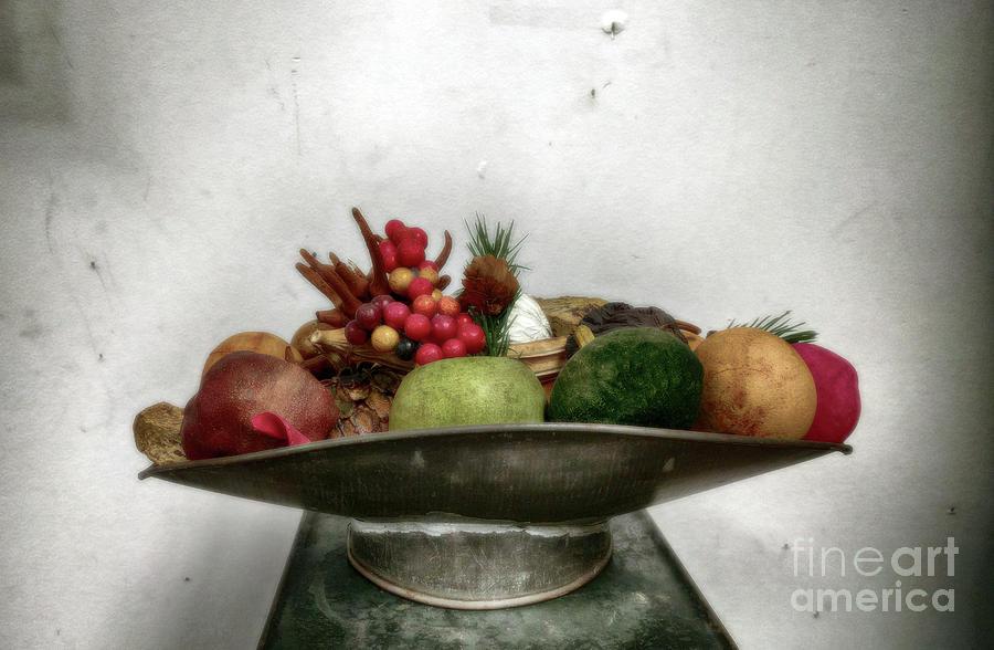 Still-life Photograph - Dead Life by Steven Digman