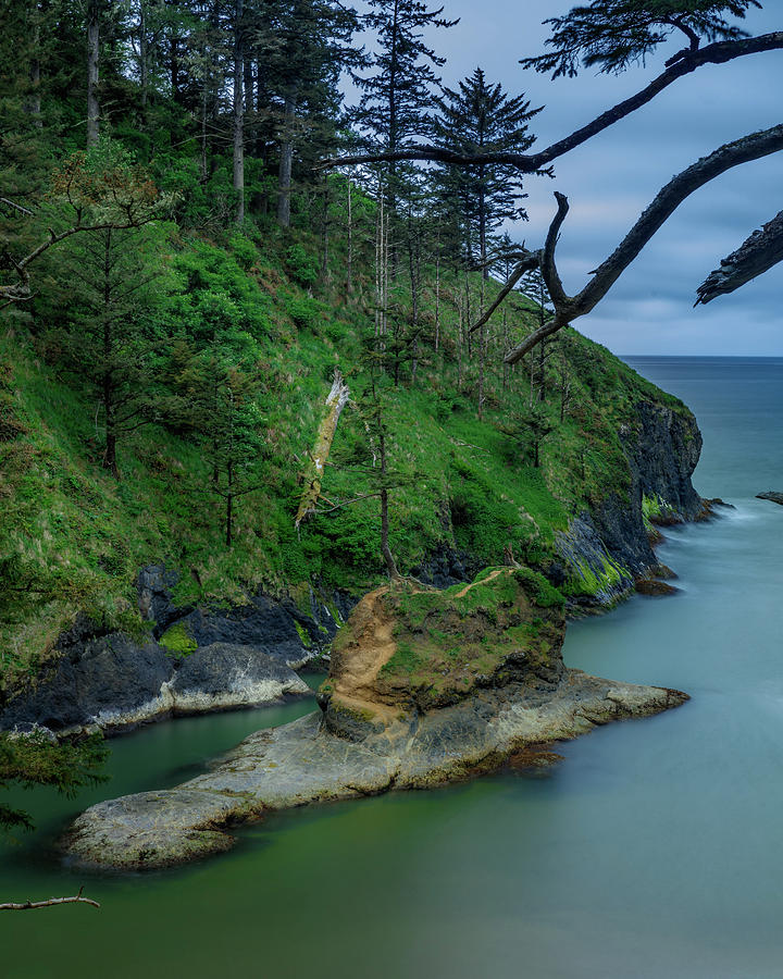 Dead Man's Cove 17 by Mike Penney