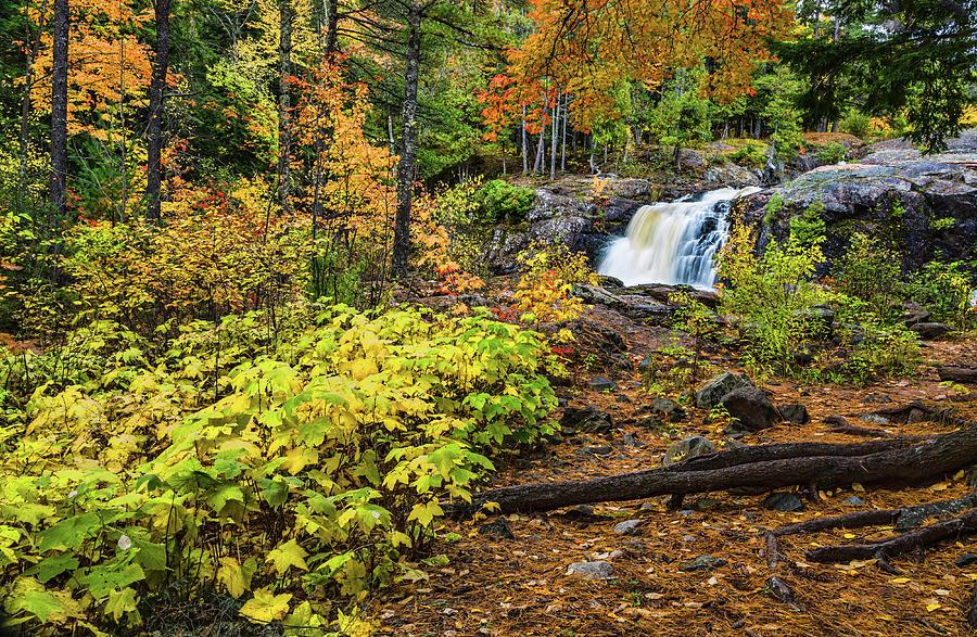 Dead River Falls by Joe Holley