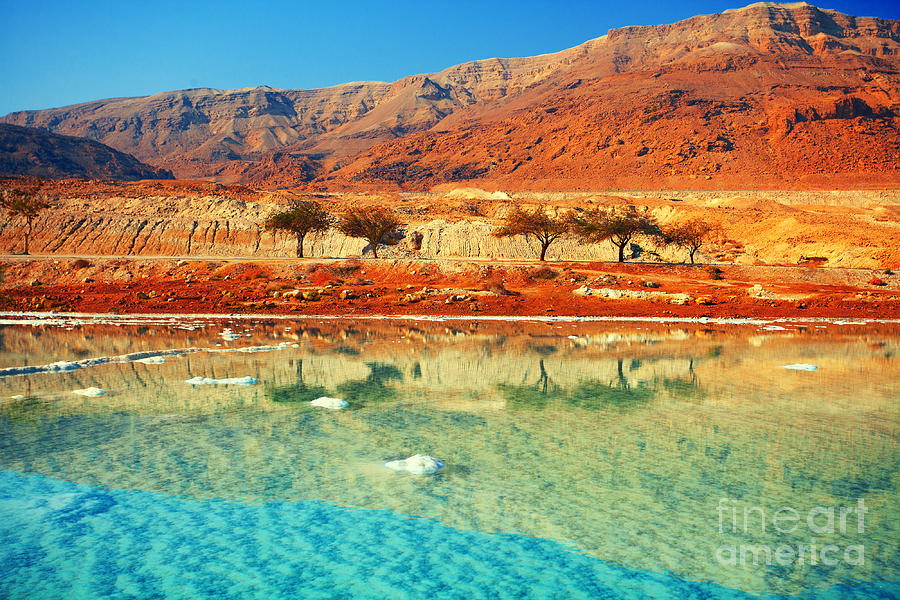 Beauty Photograph - Dead Sea by Vvvita